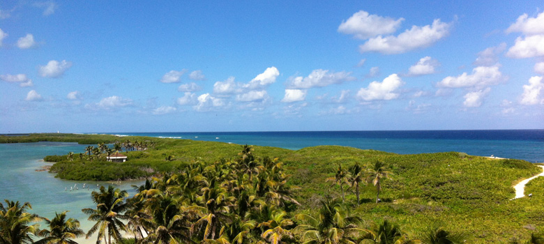 Contoy Island Tour, Mexican Caribbean